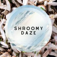 shroomydaze